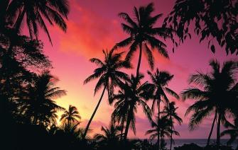 Vatuvele island Resort